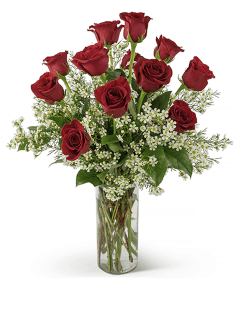 Celebrate Red Rose Day On June 12th