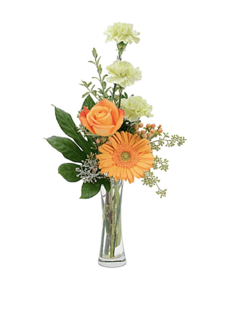 Enjoy Bussey's Flowers' Seasonal Floral Favorites