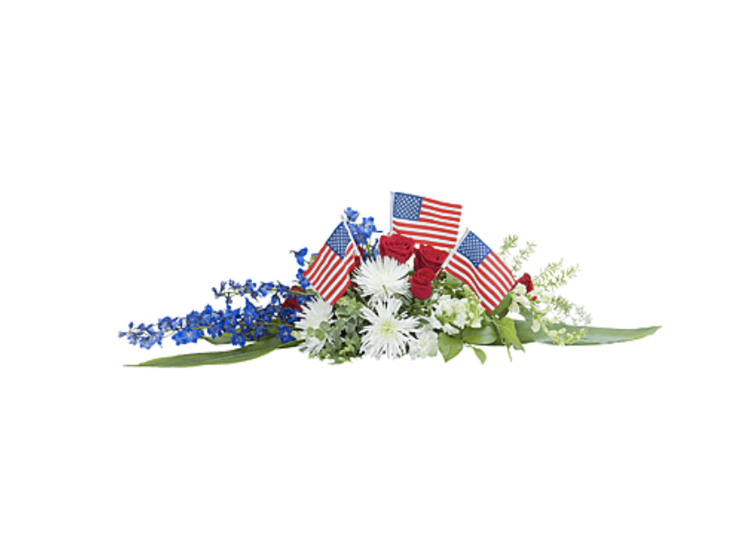 Pay Tribute To Those Who Served in Our Armed Forces on Veteran's Day